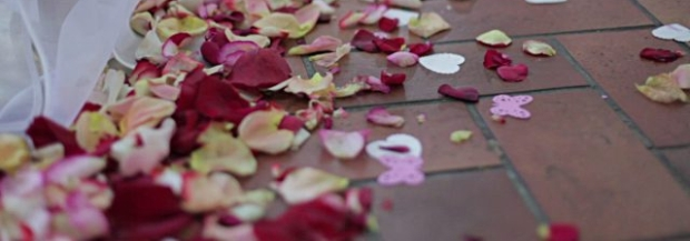 2557947-sparse-rose-petals-on-the-floor-after-wedding-ceremony